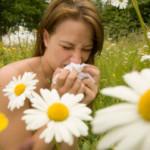 Domena internetowa o alergiach – treść dla alergików